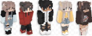 Five Minecraft Characters